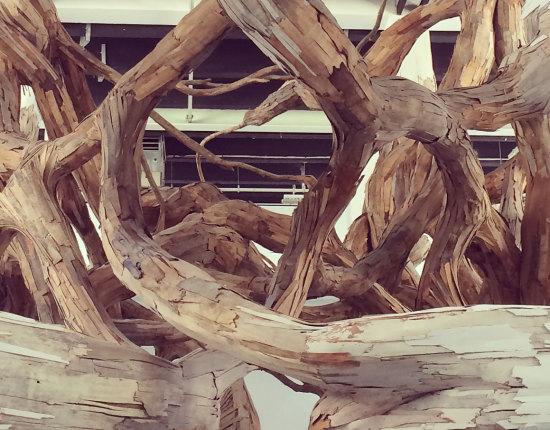 wood-interiors